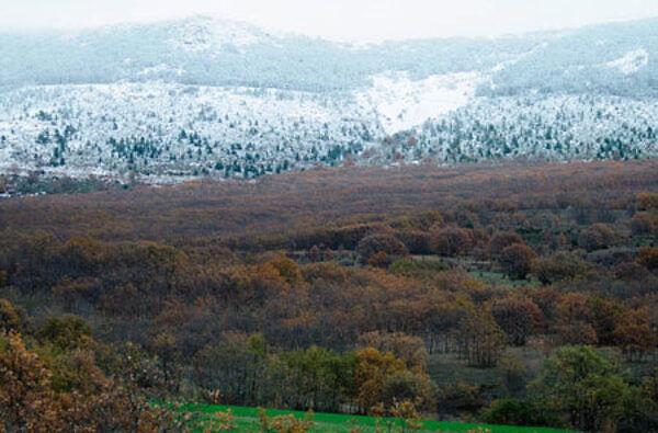 Montes de la Reserva de la Biosfera Sierra de Rincón